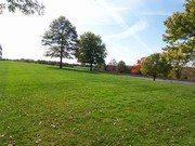 Покос травы,  косьба,  стрижка   газонов и бурьяна в Минске и пригороде(