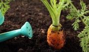 Грунт растительный в мешках Выгодная цена
